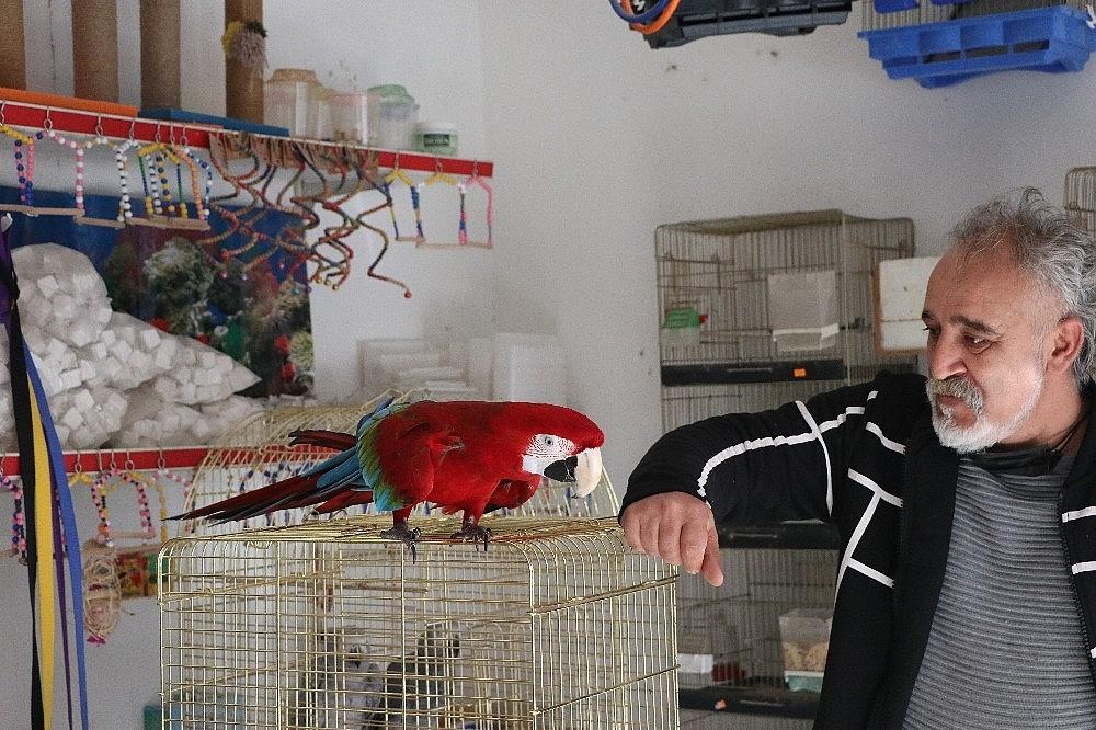 2021/03/bu-papagan-insan-gibi-su-iciyor-muzik-duyunca-oynuyor-20210304AW25-2.jpg