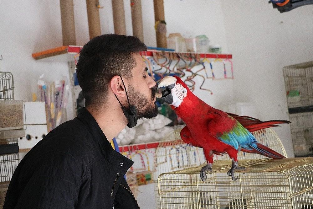 2021/03/bu-papagan-insan-gibi-su-iciyor-muzik-duyunca-oynuyor-20210304AW25-3.jpg