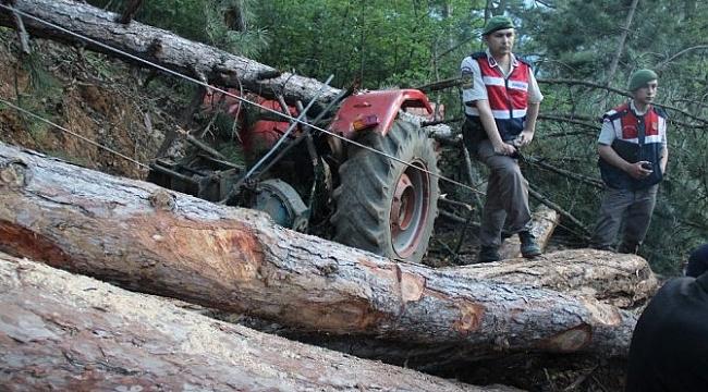 Kesilen Ağacın Altında Kalarak Hayatını Kaybetti