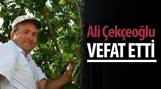 Ali Çekçeoğlu Kalbine Yenildi