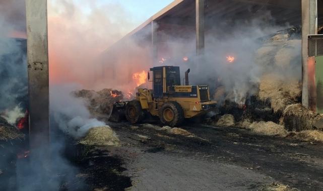 Vali Işık yangın çıkan çiftlikte incelemelerde bulundu