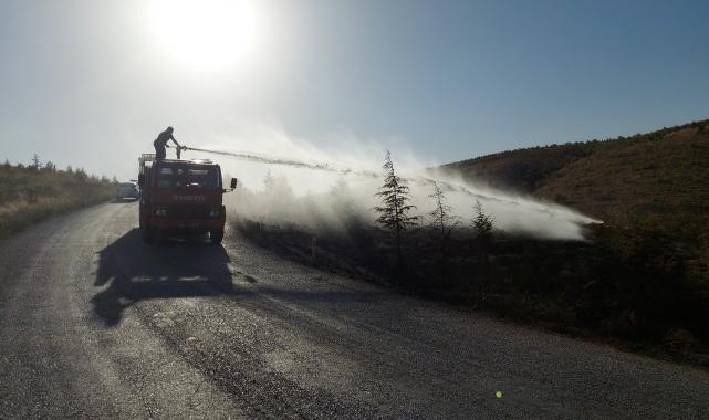 Konya'da ormanlık alanda çıkan yangın büyümeden söndürüldü